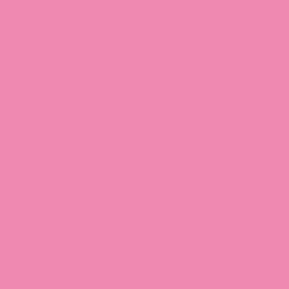 イマジン ウォールペイント2L スタンダードカラー 【067】 Gentle pink ...