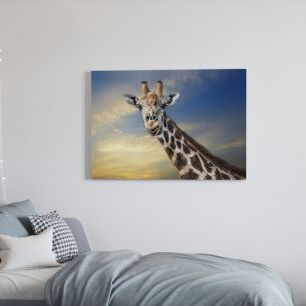 オーダーアートパネル PHOTOWALL / Friendly Giraffe (e22525)