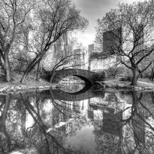 輸入壁紙 カスタム壁紙 PHOTOWALL / Bridge in Central Park - b/w (e1593)