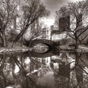 輸入壁紙 カスタム壁紙 PHOTOWALL / Bridge in Central Park - Sepia (e1594)