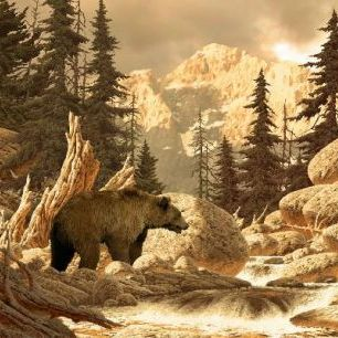 輸入壁紙 カスタム壁紙 PHOTOWALL / Grizzly Bear in the Tetons (e1488)