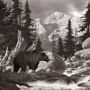 輸入壁紙 カスタム壁紙 PHOTOWALL / Grizzly Bear in the Tetons - Sepia (e1489)