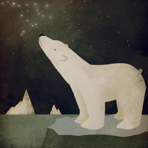 輸入壁紙 カスタム壁紙 PHOTOWALL / Ryan Fowler - Constellations Polar Bear (e22284)