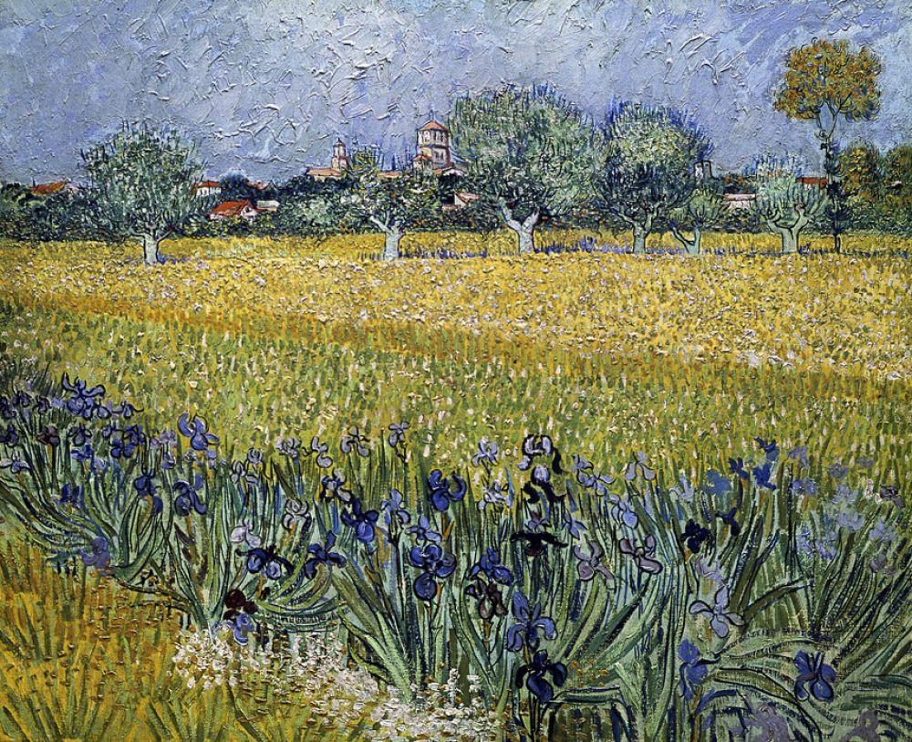輸入壁紙 カスタム壁紙 Photowall View Of Arles With Irises