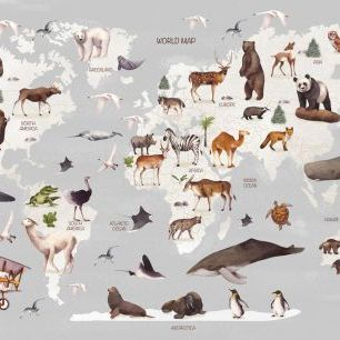 輸入壁紙 カスタム壁紙 PHOTOWALL / World of Animals Map (e321895)
