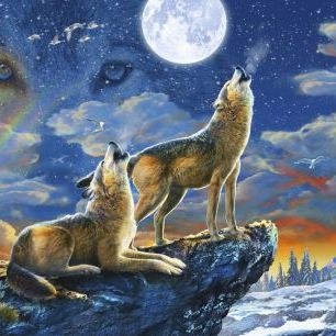 輸入壁紙 カスタム壁紙 PHOTOWALL / Wolves Howling to the Moon (e327637)