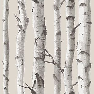 【サンプル】はがせる 壁紙 シール 「NUWALLPAPER」 Birch Tree Peel And Stick WALLPAPER / NU1650