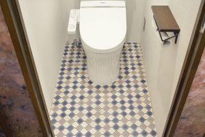cf-toilet-im