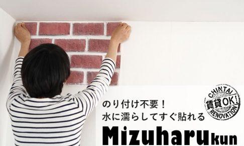 Mizuharukun